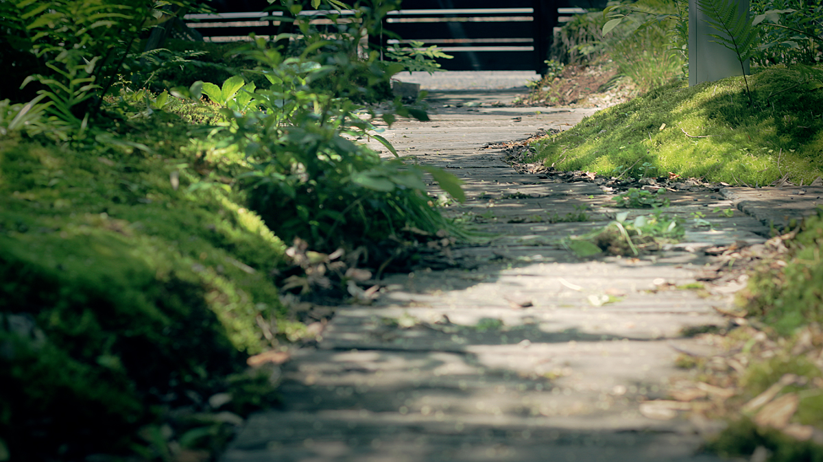 枕木の小道2