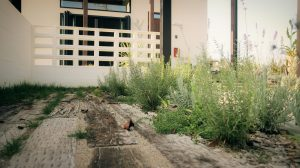 ガーデンデザイン 新潟市